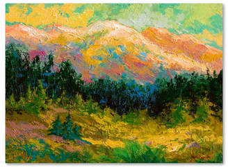 """High Country Marion Rose ummer High Country' Canvas Art - 18"""" x 24"""""""