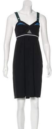 VPL Sleeveless Knee-Length Dress