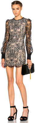 Alexander McQueen Butterfly Lace Mini Dress on Black & Flesh $2,495 thestylecure.com
