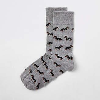 River Island Grey sausage dog print socks