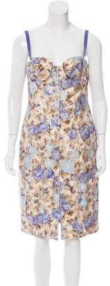 Philosophy di Alberta Ferretti Printed Sheath Dress