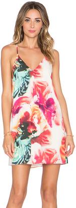 Alice + Olivia Fierra Y Back Dress $275 thestylecure.com