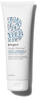 Briogeo Scalp Revival Charcoal + Peppermint Oil Cooling Jelly Conditioner