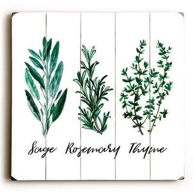 Wayfair 'Sage Rosemary Thyme' Graphic Art Print on Wood