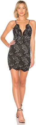 by the way. Vicky Lace Mini Dress