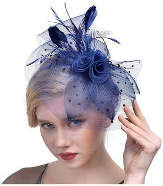 Patty Both Penny Mesh Hat Fascinator with Mesh Ribbons and Feathers