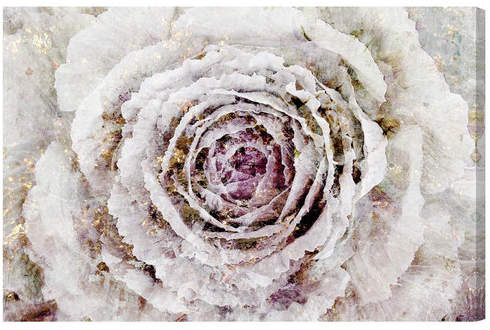 Willa Arlo Interiors 'Winter New York Flower' Graphic Art Print Format: Canvas,