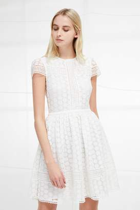 Parker Fcus Lace Fit and Flare Dress