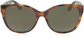 Gucci GG0097S 006 Havana Acetate Cat Eye Women's Polarized Sunglasses