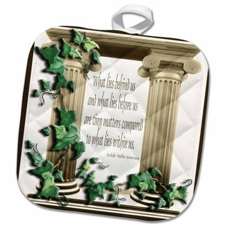 3dRose Ivy Pillars What lies behind us - Pot Holder, 8 by 8-inch