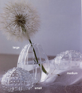 Roost Glass Sea Urchin Vases