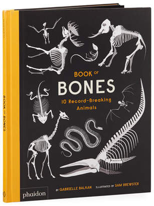 "Hachette Book Group Book of Bones"" Children's Book"