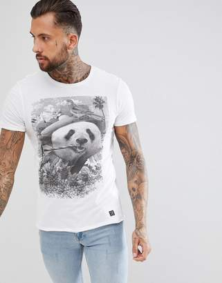 Blend of America t-shirt in panda print