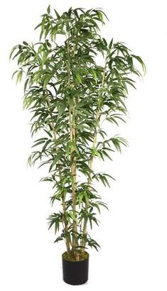 Wildon Home Floor Bamboo Tree