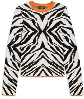 Topshop Zebra Skinny Sweater