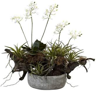 Pottery Barn Faux Potted Orchid and Succulent Garden