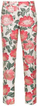 Dolce & Gabbana floral-print cropped skinny trousers