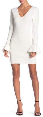 Endless Rose Bodycon Knit with Ruffled Sleeves