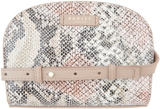 Radley London London Clifton Hall Zip Around Small Crossbody