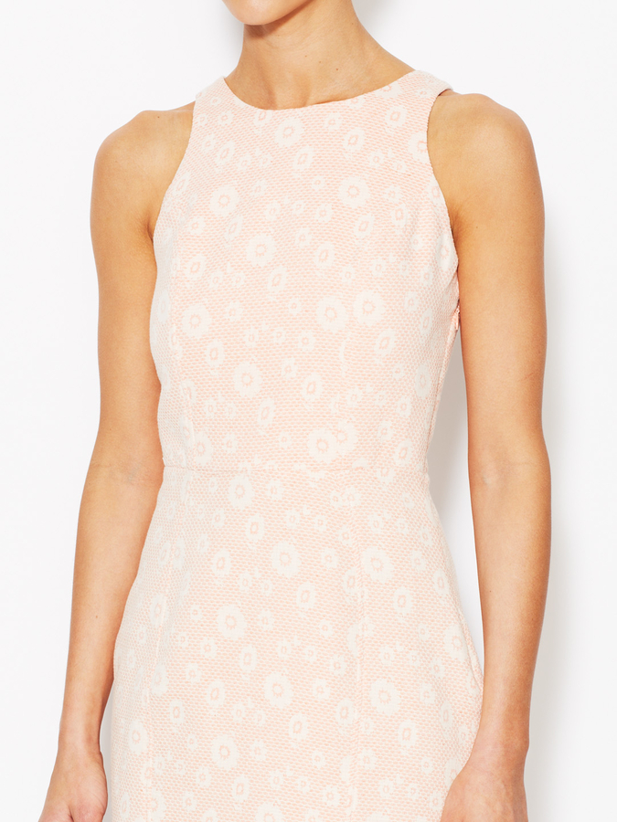 Dolce Vita Bluebell Cotton Sheath Dress