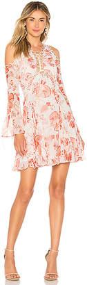Thurley Chintz Print Dress