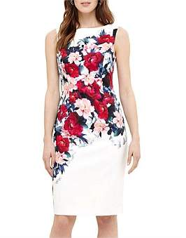 Phase Eight Cassia Floral Printed Dress