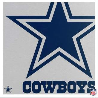 Pottery Barn Teen NFL Metal Wall Art, Cowboys