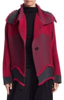 Issey Miyake Chromatic Hawk Jacket
