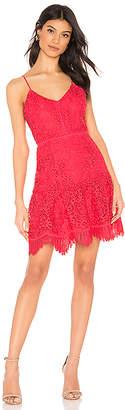 BB Dakota RSVP by Party Has Arrived Dress