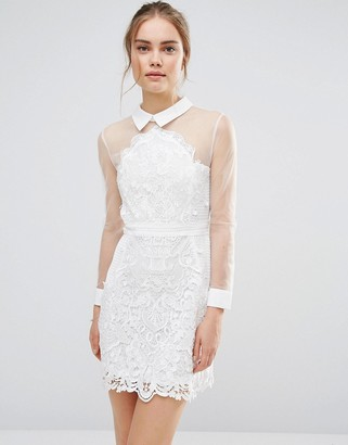 Endless Rose Sheer Lace Shirt Dress $113 thestylecure.com