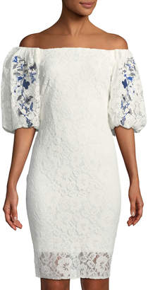 Taylor Embroidered Balloon-Sleeve Lace Dress