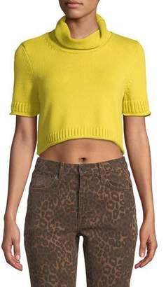 Alexander Wang Cropped Turtleneck Short-Sleeve Sweater