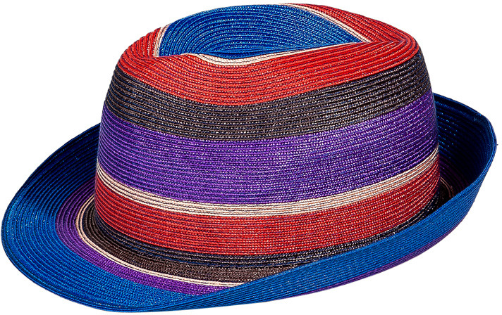 Etro Royal Blue and Violet Striped Hat