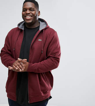 Lacoste Big Fit Hooded Zip Through Sweat in Burgundy