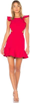 BCBGMAXAZRIA Nicole Dress