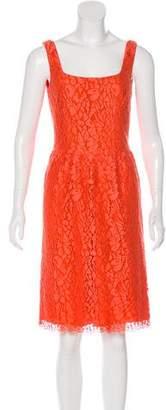 Issa Lace Sleeveless Dress