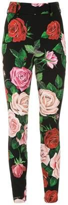 Dolce & Gabbana rose bloom printed leggings