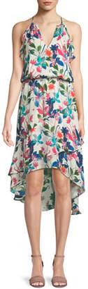 Parker Allister Floral-Print Silk Dress