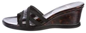Stuart Weitzman Tortoise Wedge Sandals