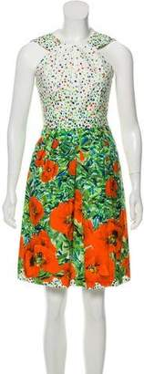 Milly Printed Sleeveless A-Line Dress