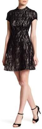 Cynthia Steffe Annette Flocked Lace Dress