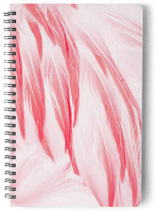 Flamingo Feathers Self-Launch Notebook