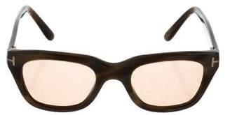 Tom Ford Snowdon Tinted Sunglasses