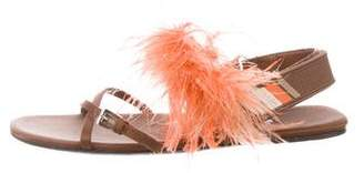 Prada Feather-Embellished Satin Flat Sandals