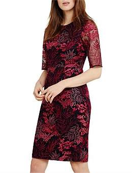 Phase Eight Fern Embroidered Dress