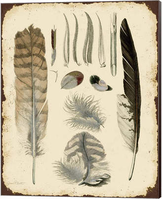 STUDY Metaverse Vintage Feather A By Jean Plout Canvas Art