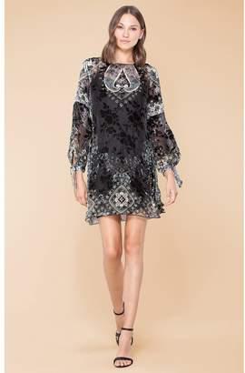 Hale Bob Solange Silk Velvet Burnout Dress