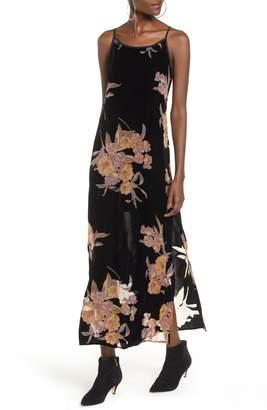 Band of Gypsies Mallorey Floral Print Velvet Dress