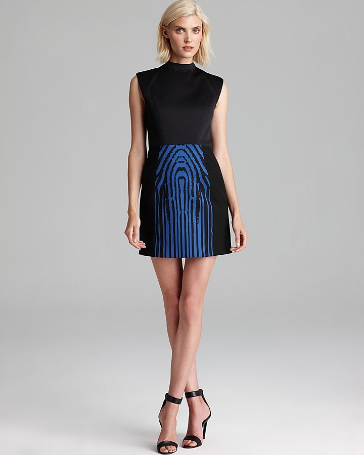 Tibi Dress - Zebra Stripe Combo