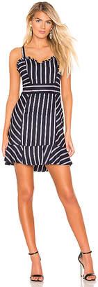 Parker Jemima Dress